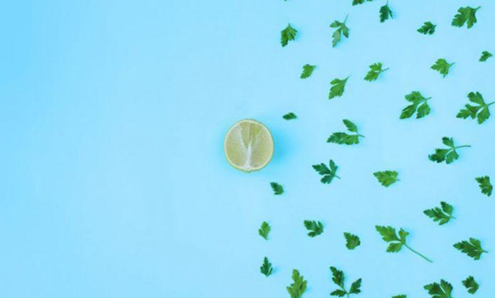 Limon ve Maydanoz Kürü Yapımı