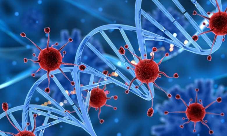 Akut Miyelojenöz Lösemi (AML) Belirtileri | Kan ve Kemik İliği Kanseri